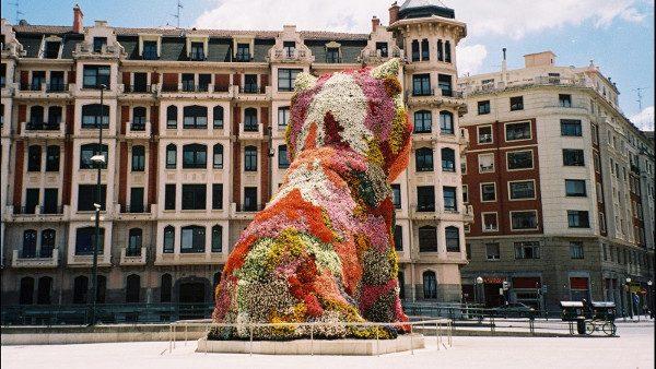 Asistencia técnica Ayuntamiento de Bilbao